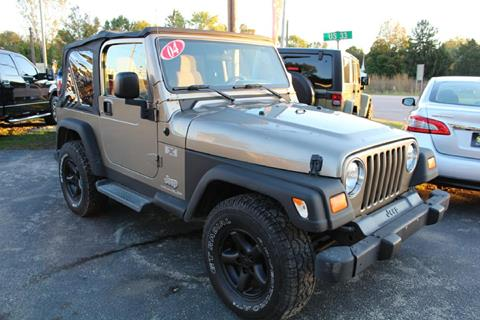 2004 Jeep Wrangler for sale at Auto Force USA in Elkhart IN