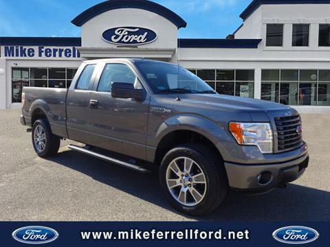 2014 Ford F-150 for sale in Williamson, WV
