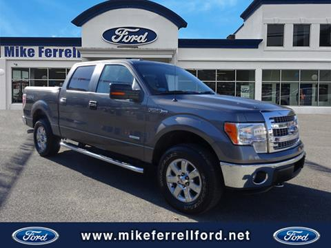 2013 Ford F-150 for sale in Williamson, WV