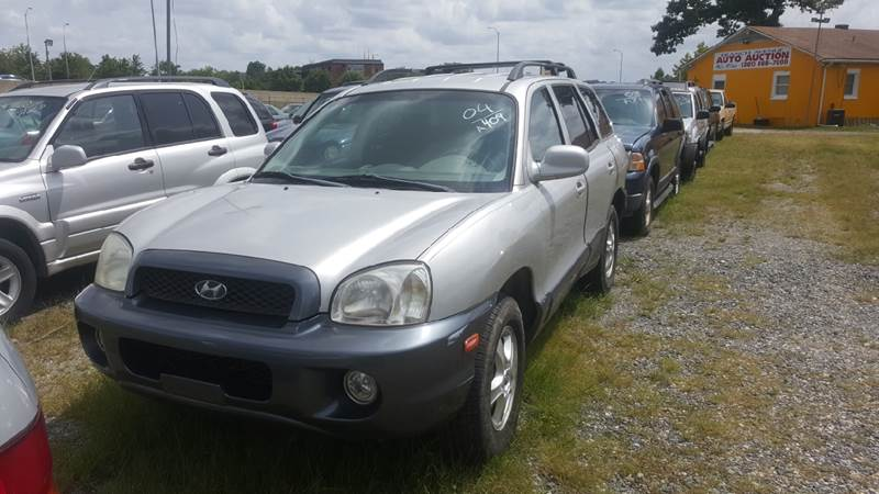 2004 Hyundai Santa Fe for sale at Branch Avenue Auto Auction in Clinton MD