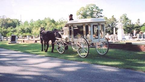 1901 Antique Wooden Horse Drawn Hearse