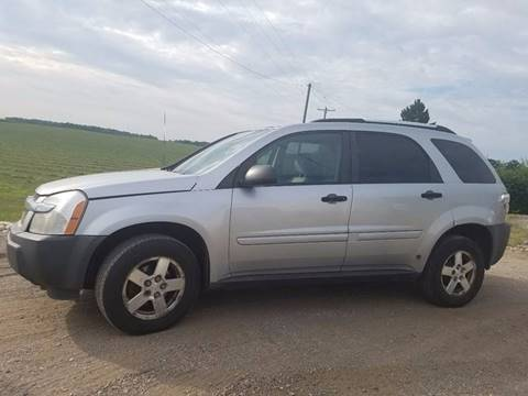 2005 Chevrolet Equinox for sale at B & T Car Sales LLC in Sand Lake MI