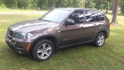 2011 BMW X5 for sale in Nauvoo, AL