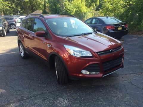 2014 Ford Escape for sale in Eastpointe, MI