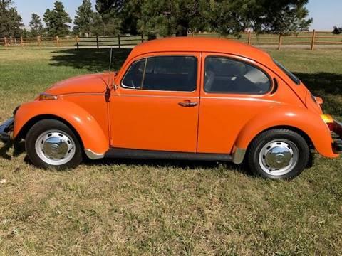 1974 Volkswagen Beetle for sale in Piedmont, SD