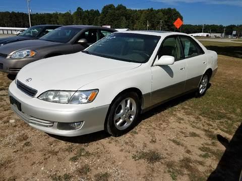2000 Lexus ES 300 for sale in Montague, MI