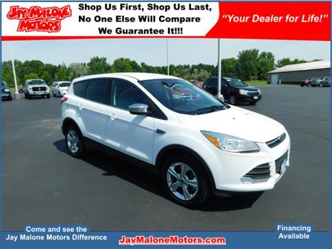 2014 Ford Escape for sale in Hutchinson, MN