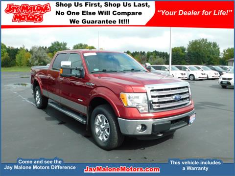 2014 Ford F-150 for sale in Hutchinson MN