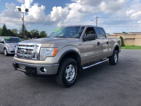 2012 Ford F-150 for sale at Majestic Automotive Group in Cinnaminson NJ