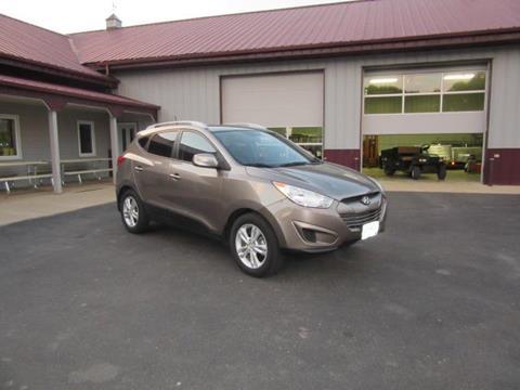 2010 Hyundai Tucson for sale in Madison Lake, MN