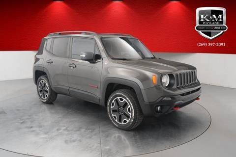 2016 Jeep Renegade for sale in Wayland, MI