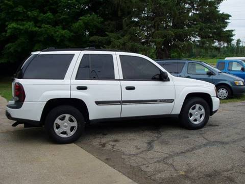 2002 Chevrolet TrailBlazer for sale at Larrys Used Cars in Hartford MI