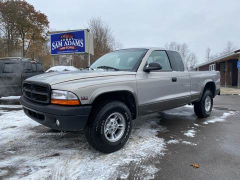 1999 Dodge Dakota for sale at Sam Adams Motors in Cedar Springs MI