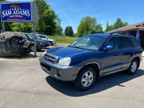 2006 Hyundai Santa Fe for sale at Sam Adams Motors in Cedar Springs MI
