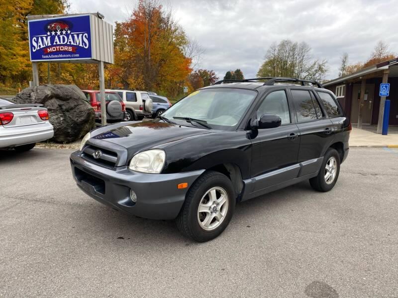 2006 Hyundai Santa Fe for sale at Sam Adams Motors in Cedar Springs MI