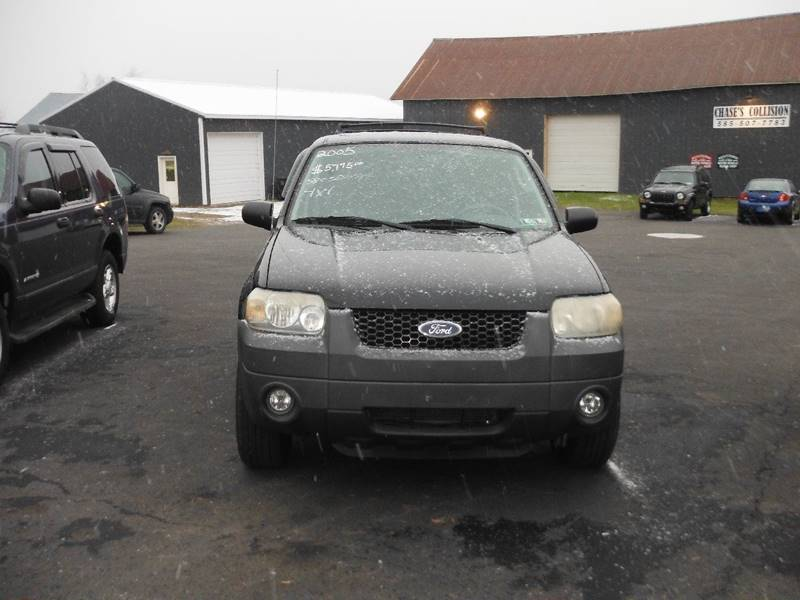Ford Escape XLT In North Rose NY Vicki Brouwer Autos Inc - 2005 escape