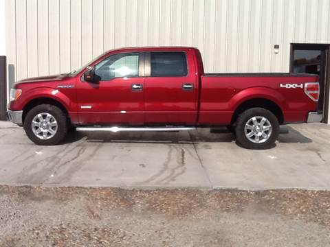 2014 Ford F-150 for sale at TransEquip LLC in Quinter KS