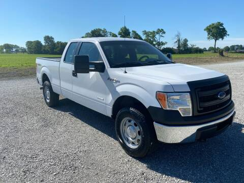 2014 Ford F-150 for sale at MOES AUTO SALES in Spiceland IN