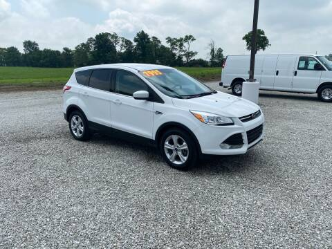 2013 Ford Escape for sale at MOES AUTO SALES in Spiceland IN
