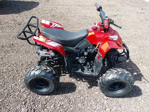 2019 Coolster 110cc Sport OUT OF STOCK for sale at Chandler Powersports in Chandler AZ