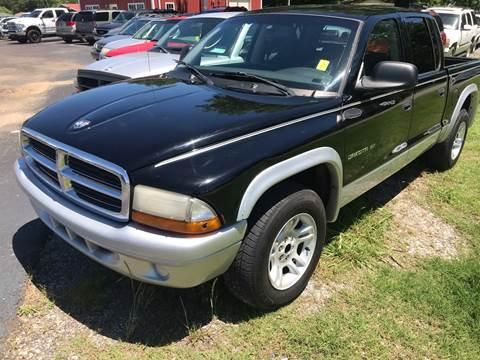 2002 Dodge Dakota for sale at Sartins Auto Sales in Dyersburg TN