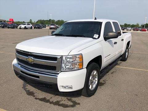 2010 Chevrolet Silverado 1500 for sale at Auto Sales & Service Wholesale in Indianapolis IN