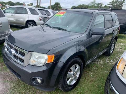 2009 Ford Escape for sale at EXECUTIVE CAR SALES LLC in North Fort Myers FL