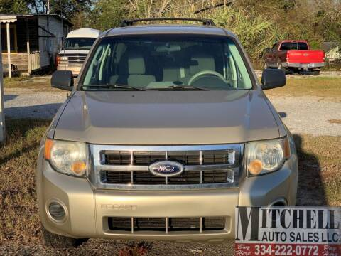 2010 Ford Escape for sale at Mitchell Auto Sales LLC in Andalusia AL