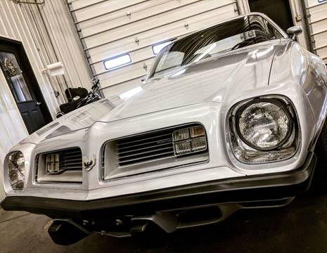 1975 Pontiac Firebird for sale in Hamilton, MI