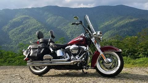 2017 Harley-Davidson FLSTC for sale in Enterprise, AL