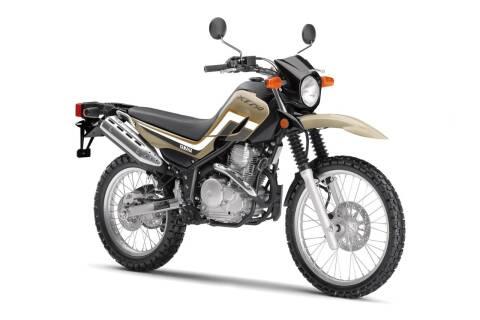 2020 Yamaha XT250 for sale at GT Toyz Motorsports & Marine - GT Toyz Powersports in Clifton Park NY