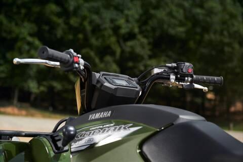 2020 Yamaha Kodiak 450