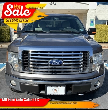 2010 Ford F-150 for sale at MD Euro Auto Sales LLC in Hasbrouck Heights NJ