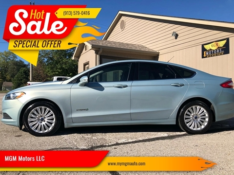 2014 Ford Fusion Hybrid for sale at MGM Motors LLC in De Soto KS