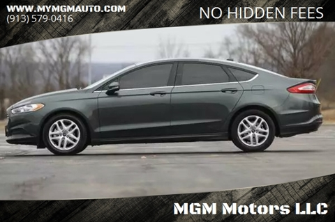 2016 Ford Fusion for sale at MGM Motors LLC in De Soto KS