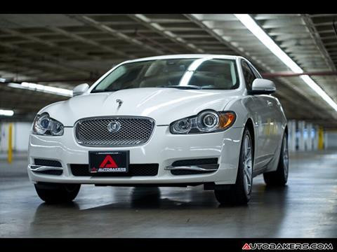 Used Jaguar Xf >> Used Jaguar Xf For Sale Carsforsale Com