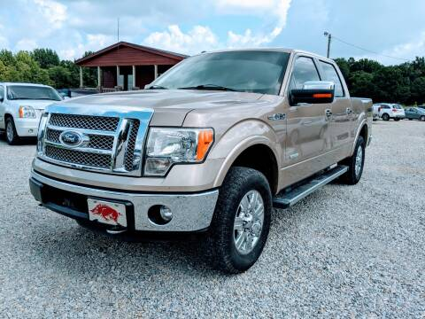 2012 Ford F-150 for sale at Delta Motors LLC in Jonesboro AR