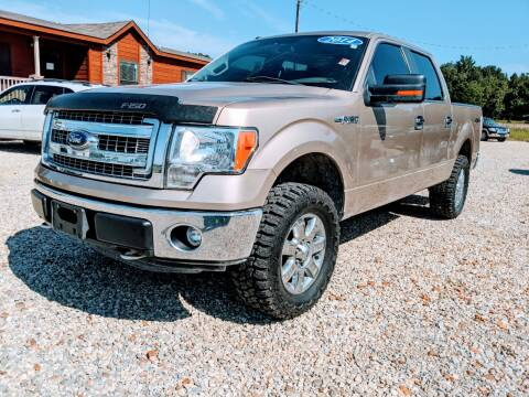 2014 Ford F-150 for sale at Delta Motors LLC in Jonesboro AR