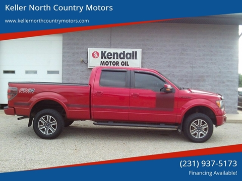 2012 Ford F-150 for sale in Howard City, MI