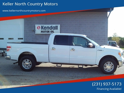 2010 Ford F-150 for sale in Howard City, MI