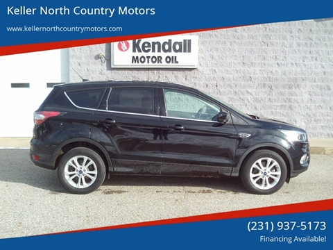 2017 Ford Escape for sale in Howard City, MI
