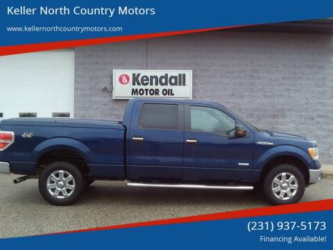 2011 Ford F-150 for sale in Howard City, MI