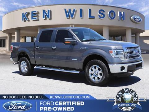 2014 Ford F-150 for sale in Canton, NC