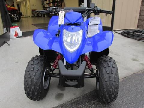 2014 Kymco MONGOOSE 90 for sale in Cross Lanes, WV