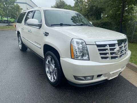 2010 Cadillac Escalade ESV for sale at PM Auto Group LLC in Chantilly VA