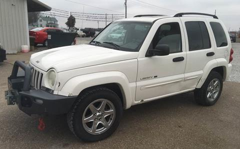 2003 Jeep Liberty for sale in Princeton, IN