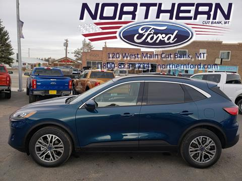 2020 Ford Escape for sale in Cut Bank, MT