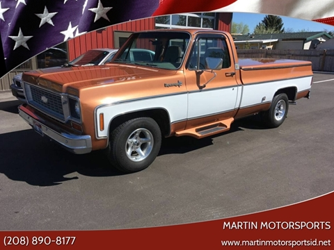 1973 Chevrolet C/K 10 Series for sale at Martin Motorsports in Star ID