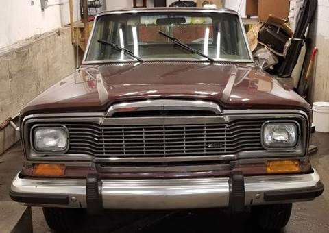 1981 Jeep Wagoneer for sale in Burr Ridge, IL