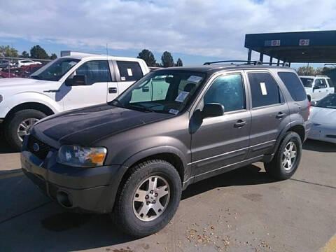 2005 Ford Escape for sale at ELITE MOTOR CARS OF MIAMI in Miami FL